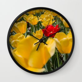 Many yellow tulips and one red Wall Clock