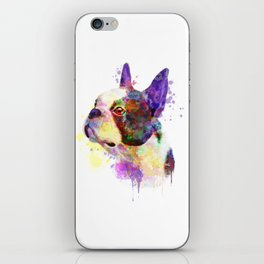 Boston Terrier watercolor, Watercolor Boston Terrier, Watercolor dog, Boston Terrier portrait iPhone Skin