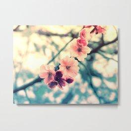 lovely spring memories Metal Print