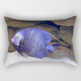 Gliding French Angelfish Rectangular Pillow