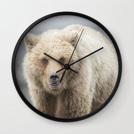Grizzy Bear One Wall Clock