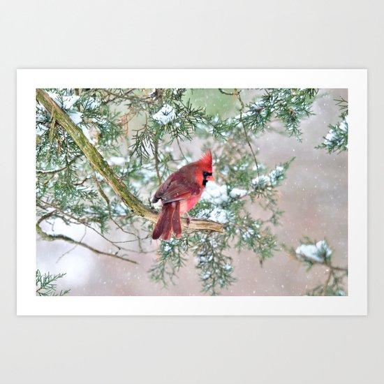Snow Day Cardinal Art Print