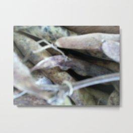 Texturas 014 Metal Print