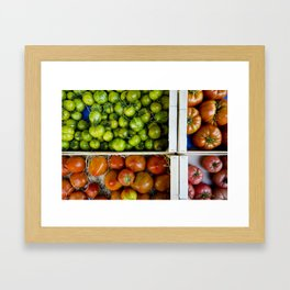 Colorful tomatoes Framed Art Print