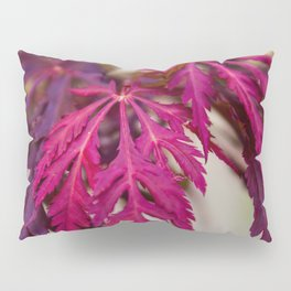 Autumn leaves in the summer Pillow Sham