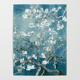 Vincent Van Gogh Almond Blossoms Teal Poster