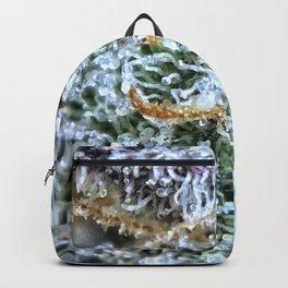 Platinum Purple Buds OG Kush x Purple Urkle Strains Backpack