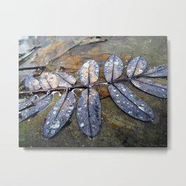 Rainy Leaves Metal Print