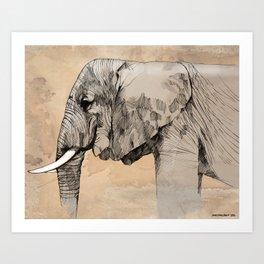 Elephant1 Art Print