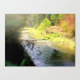 Otway Ranges Canvas Print