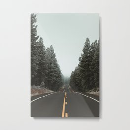 Road to the Fog Metal Print