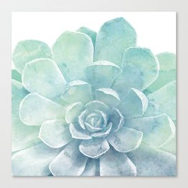 Large Succulent Canvas Print