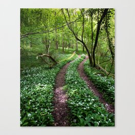 Wild Garlic Road Canvas Print