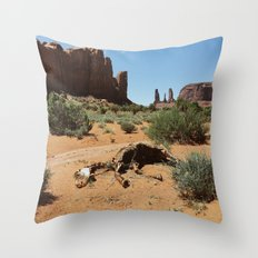 Monument Valley Horse Carcass Throw Pillow