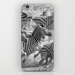 Zebras iPhone Skin
