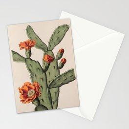 Botanical Cactus Stationery Cards