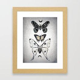 Moonwings Framed Art Print