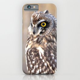 Portrait of a Short-Eared Owl iPhone Case