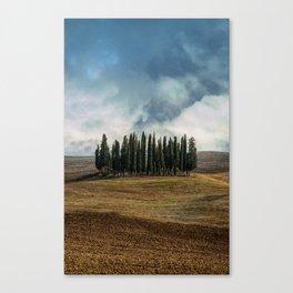 Trees of Tuscany Canvas Print