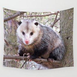 Possum Staredown Wall Tapestry