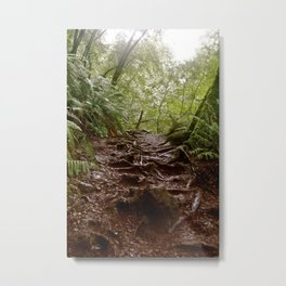 Cataract Trail Metal Print