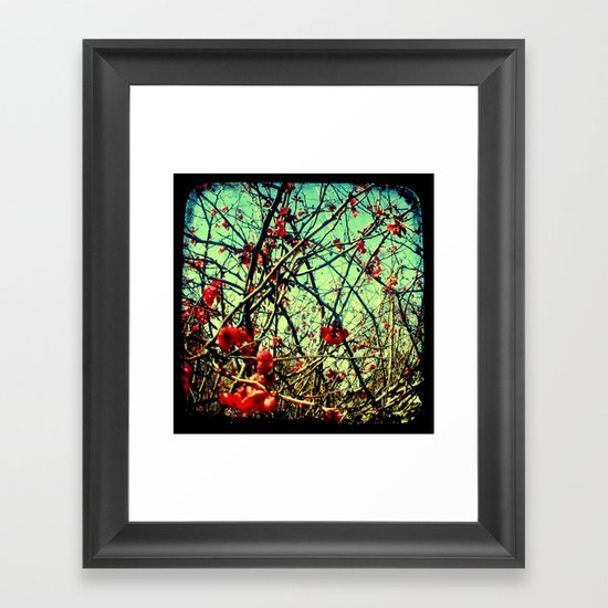 Blossom Frenzy - Through The Viewfinder (TTV) Framed Art Print