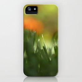 Fuzzy Landscape iPhone Case