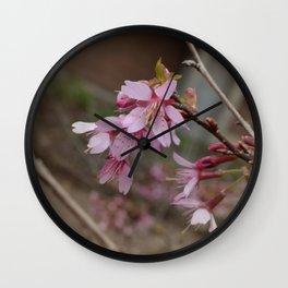 It's Spring Ya'll!! Wall Clock