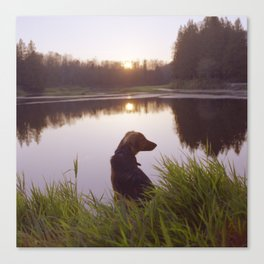 Sunset In the marsh Canvas Print