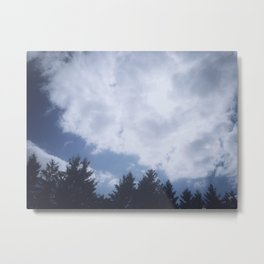 Winter 2 Metal Print