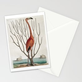 Vintage Flamingo Print Stationery Cards