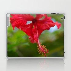 Scarlet Flower Laptop & iPad Skin