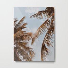 tropical palm leaves v Metal Print