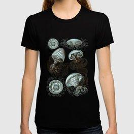 Ernst Haeckel Jellyfish Leptomedusae Cyan Brown T-shirt