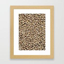 Pistachio. Background. Framed Art Print