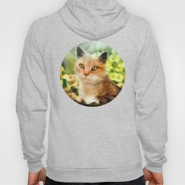 """Kitty in the sunlight field"" Hoody"