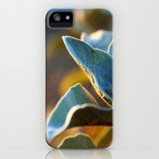 Desert Leaves iPhone (5, 5s) Slim Case