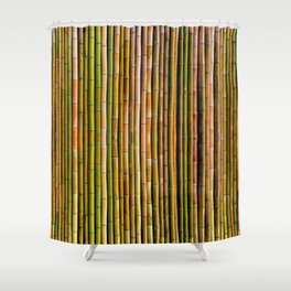 Bamboo fence, texture Shower Curtain