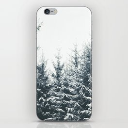 In Winter iPhone Skin