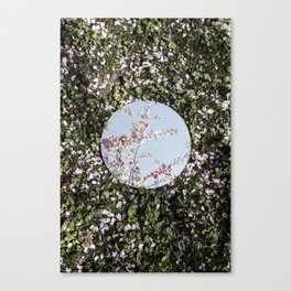 Reflections, Six Canvas Print