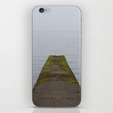 The Edge iPhone & iPod Skin