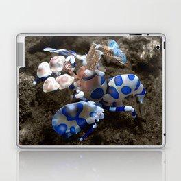 Harlequin Shrimp Laptop & iPad Skin