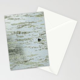 Head Poke Stationery Cards