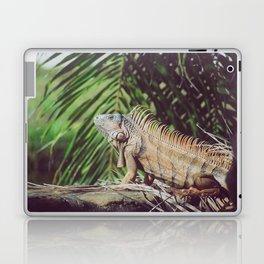 Iggy Laptop & iPad Skin