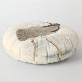 American Emu rhea americana2 Floor Pillow