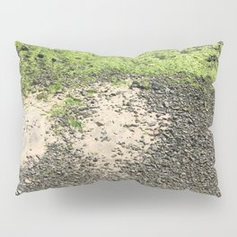 Coastal Algae Pillow Sham