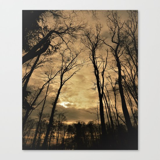snow clouds above the wood Canvas Print