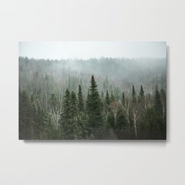 The big Green Metal Print
