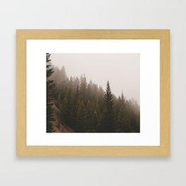 Elevation Drop - Foggy Forest PNW Framed Art Print