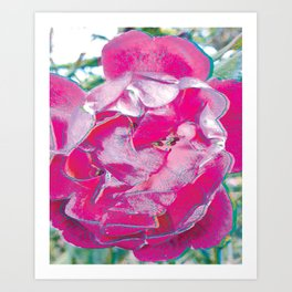 Pink Rose Pop Art Art Print